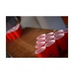 Alko Beer Pong